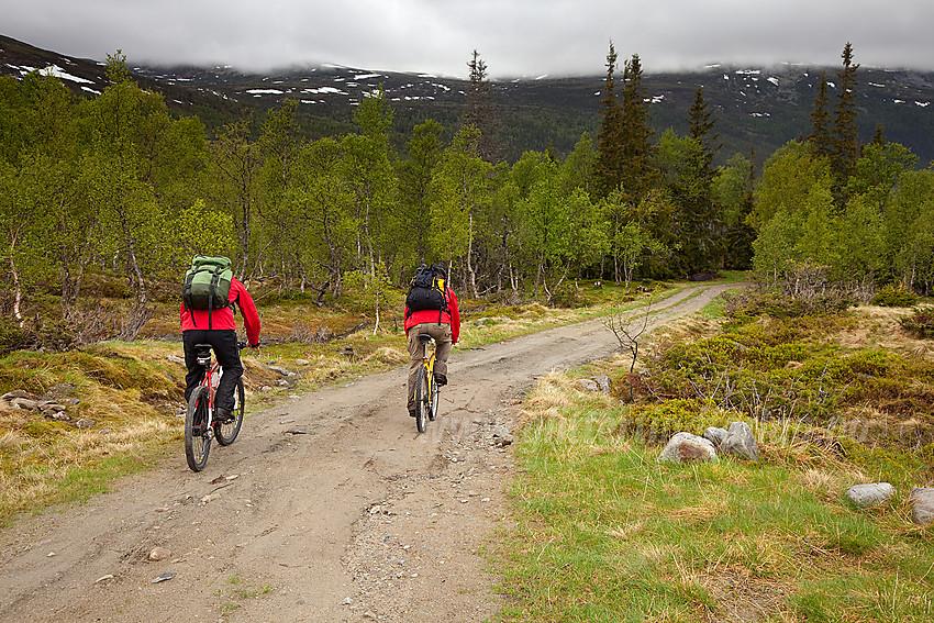 Sykkel er et hensiktsmessig hjelpemiddel på turen til og fra
